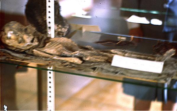 UFO researcher claims he has Kodachrome color slides of an Alien Kodach10