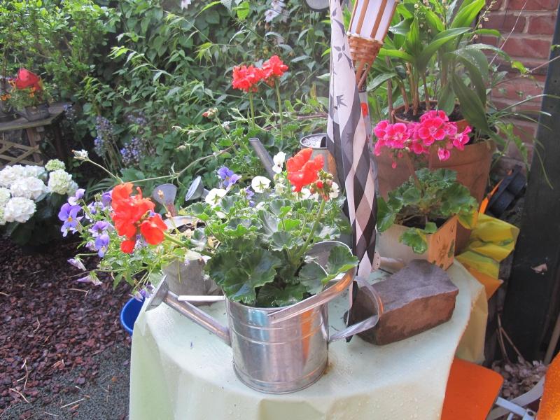 Mon jardin au printemps 2015 Jardin17