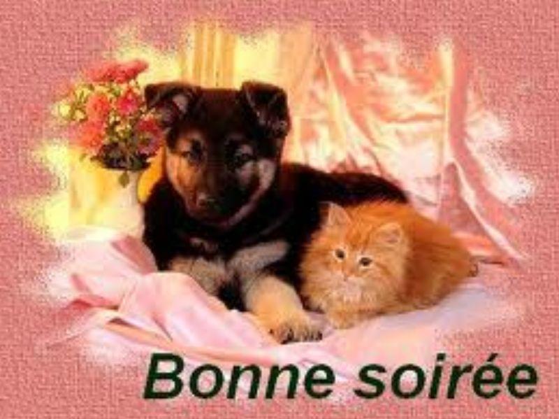 Bon Jeudi Images10