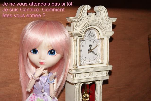 [Tranches de vie] Episode 10 : La nouvelle mascotte ! - Page 3 Dsc03516