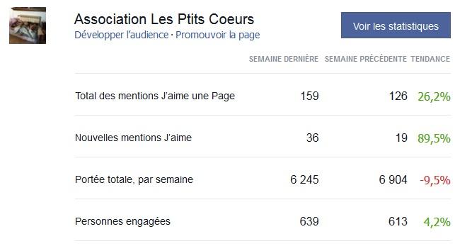 Statistiques d'audience forum et facebook 12944712