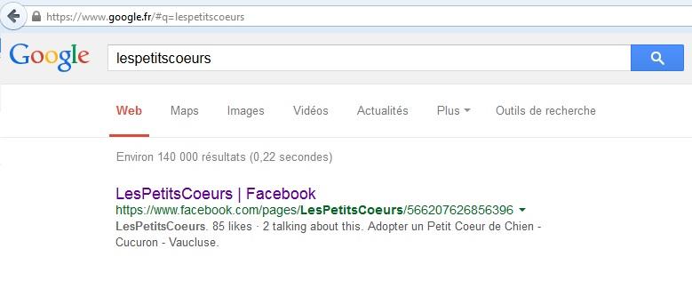 référencement google + recherche = OK Temp10