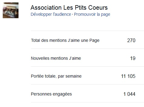 Statistiques d'audience forum et facebook Temp33