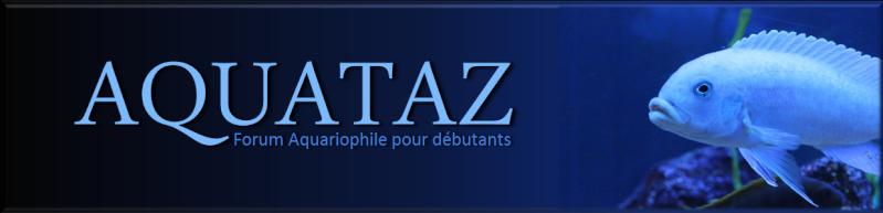 AQUATAZ - Forum Aquariophile Pour Débutants