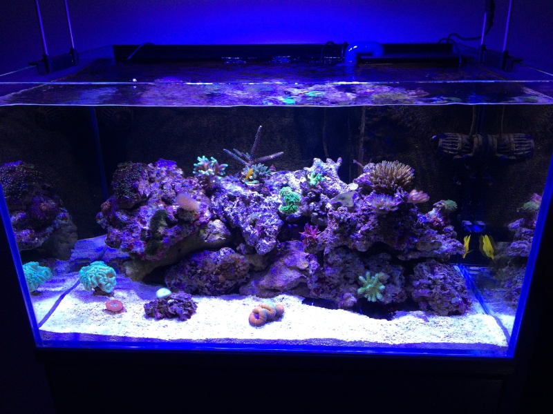 270 litres - Page 4 Img_3010