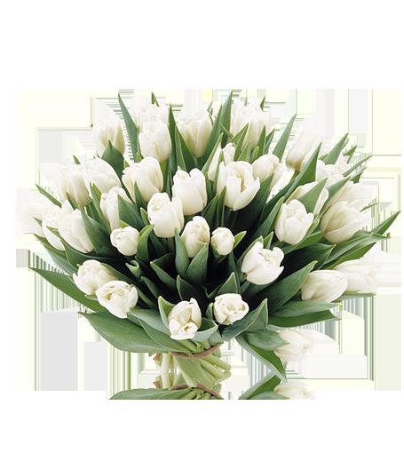Flores de mayo 710