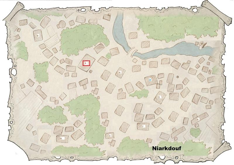 Besoin d'un village, 1 ville pour scénario avec graphismes naheulbeuk Niarkd10