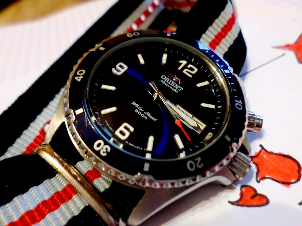 stowa - La montre de plongée du jour - tome 3 - Page 43 Sam_4416
