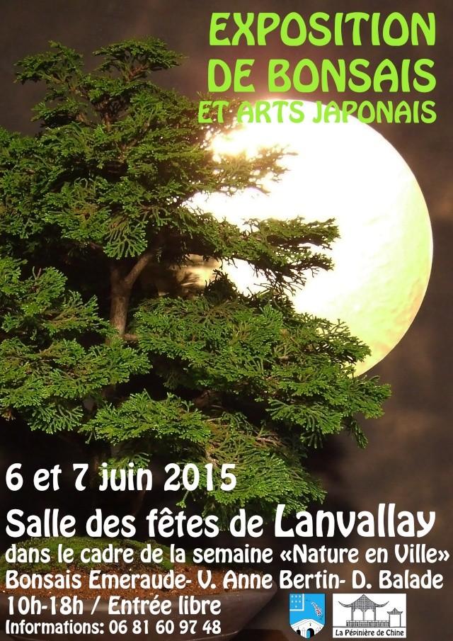 le club émeraude bonsaï  expose le 6 et 7 juin a a la sale des fêtes de lanvallay  Base_a10