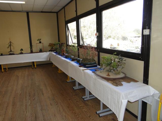9 ème fête des plantes Merdrignac (22) 2015 Dsc07319