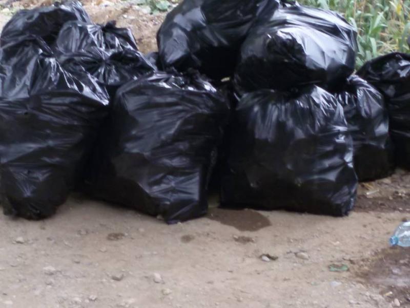 volontariat de nettoyage de la route du Cap à Aokas le 15 mai 2015 - Page 3 544