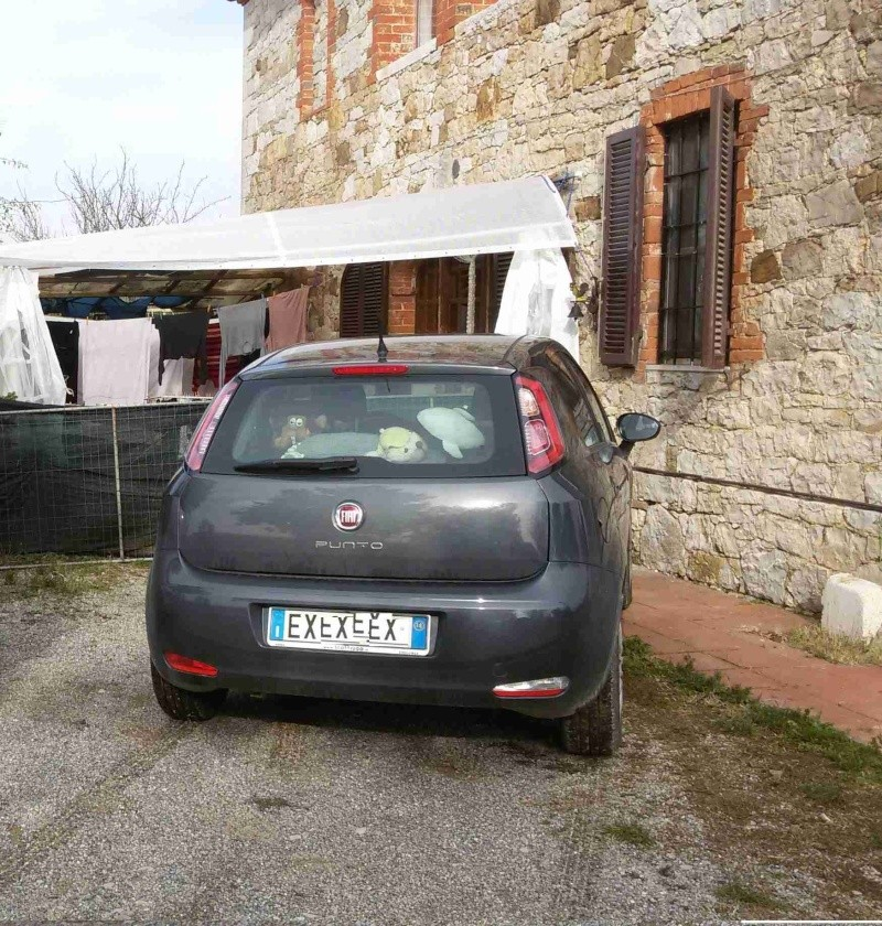 Fiat punto easypower Young  20141110