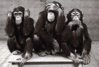 La signification secrète des ''trois singes sages'' – cachée par l'Élite  Trois_10