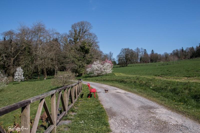 Sur la route du château de Trévarez Tryvar10