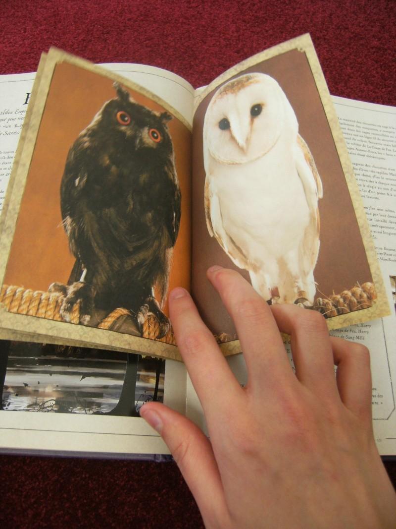 Le grand livre des créatures Dscf1127