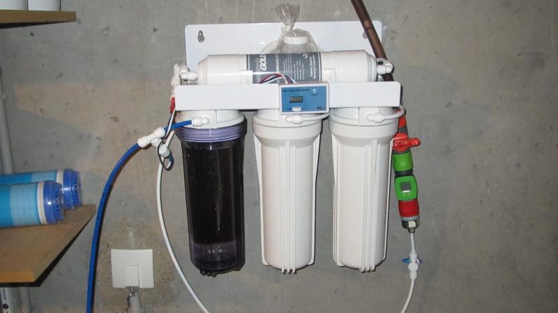Création nouvel Aquarium amazonien 830 litres  Img_4118