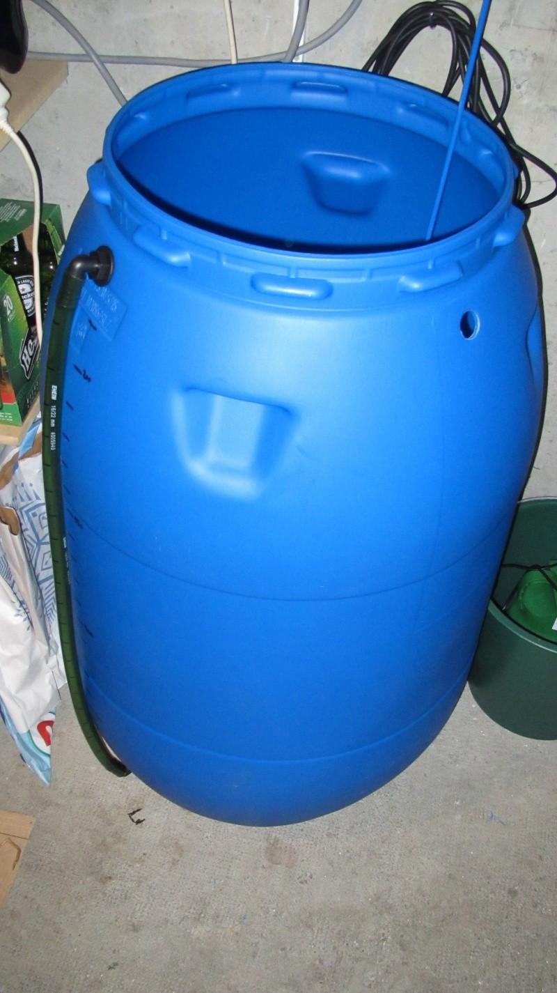 Création nouvel Aquarium amazonien 830 litres  Img_4121