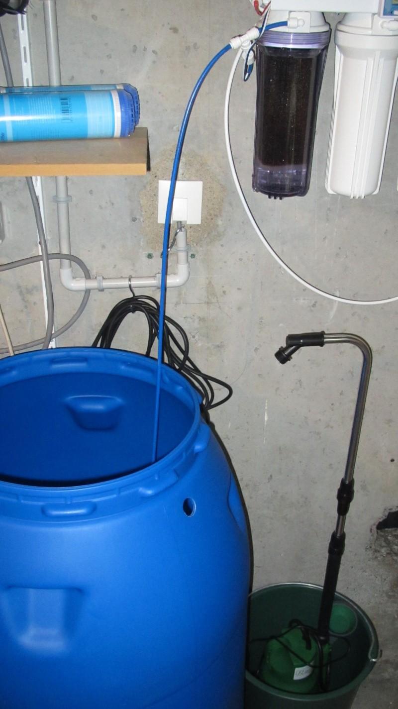 Création nouvel Aquarium amazonien 830 litres  Img_4123