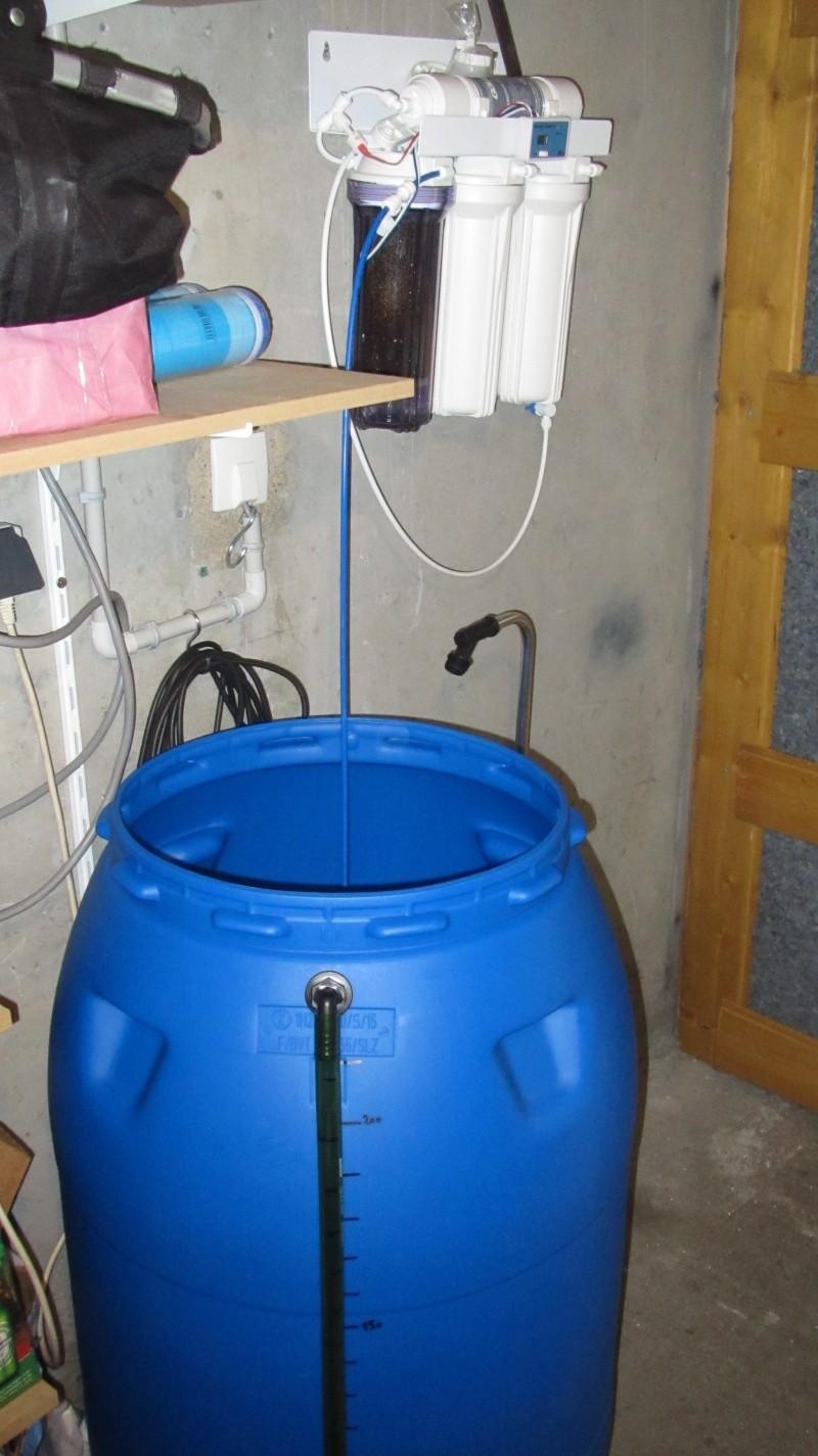 Création nouvel Aquarium amazonien 830 litres  Img_4124