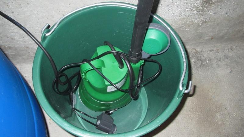 Création nouvel Aquarium amazonien 830 litres  Img_4125