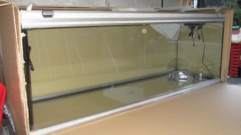 Création nouvel Aquarium amazonien 830 litres  Img_4217