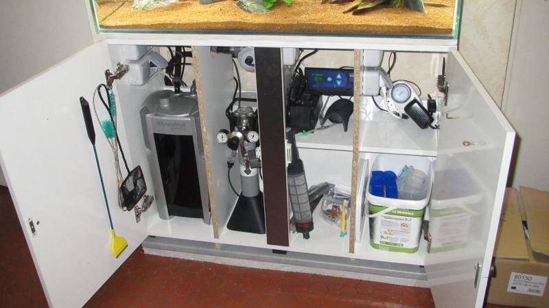 Création nouvel Aquarium amazonien 830 litres  Img_4240