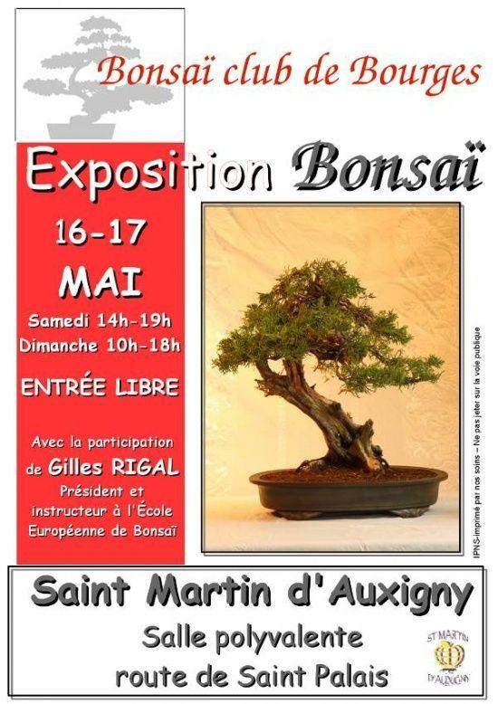Saint Martin d'Auxigny (18) les 16 et 17 mai 2015 15051610