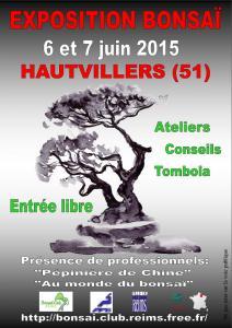 HAUTVILLERS (51) les 6 et 7 juin 2015 15060610