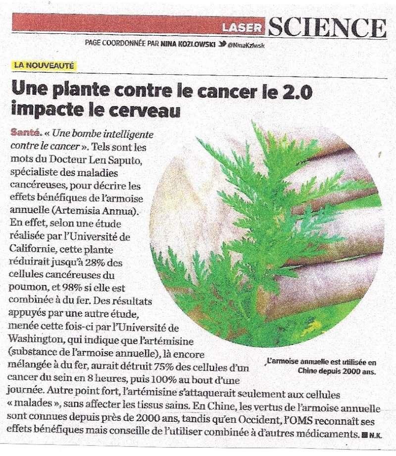 Une plante contre le cancer ? Cancer10