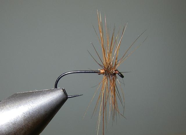 2 Palmer Tricolor P310