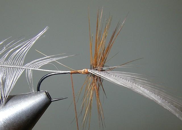 2 Palmer Tricolor P410