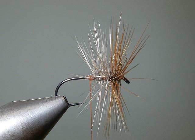 2 Palmer Tricolor P510