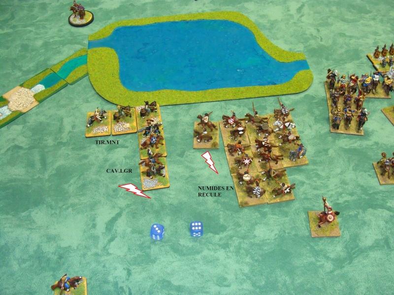 Campagne Méditerranée 220 av-JC - Page 3 Dsc05341