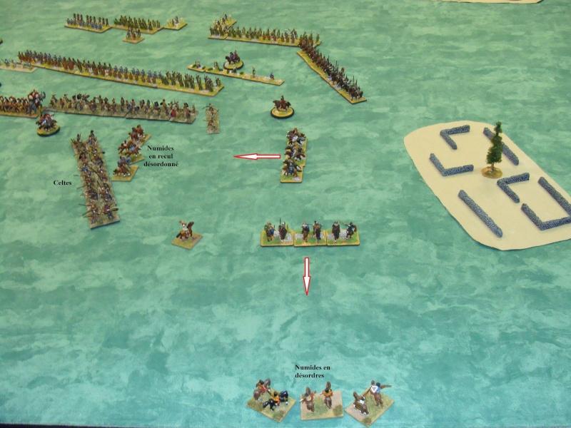 Campagne Méditerranée 220 av-JC - Page 3 Dsc05449