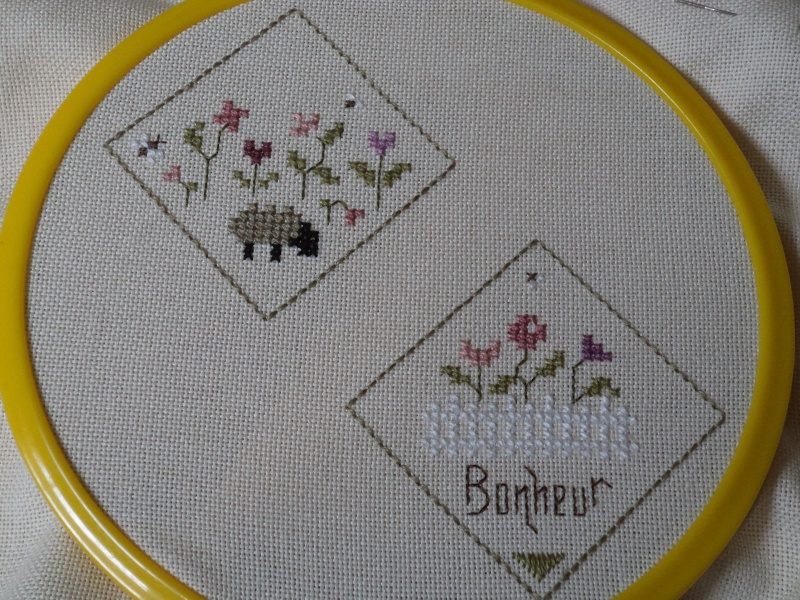 Dans mon jardin - biscornu - Page 2 Etape_16