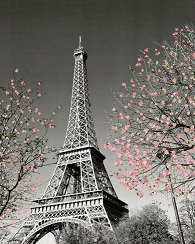 EPHEMERIDES  journalier Paris-11