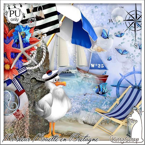 MO'SIEUR MOUETTE EN BRETAGNE - jeudi 1er aout / monday auguste 1st Folder32