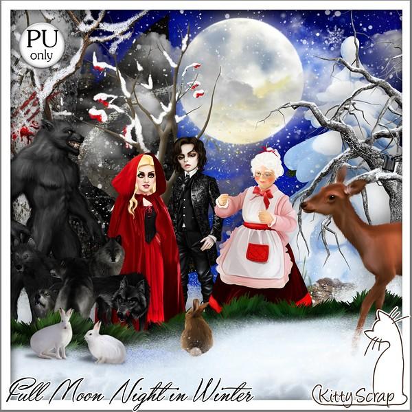 FULL MOON NIGHT IN WINTER - lundi 30 novembre / monday november 30th Kitty605