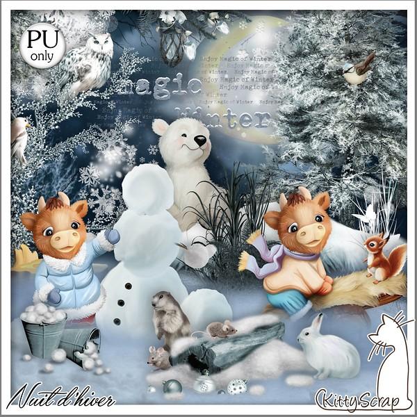 NUIT D'HIVER - jeudi 3 décembre / thursday december 3th Kitty606