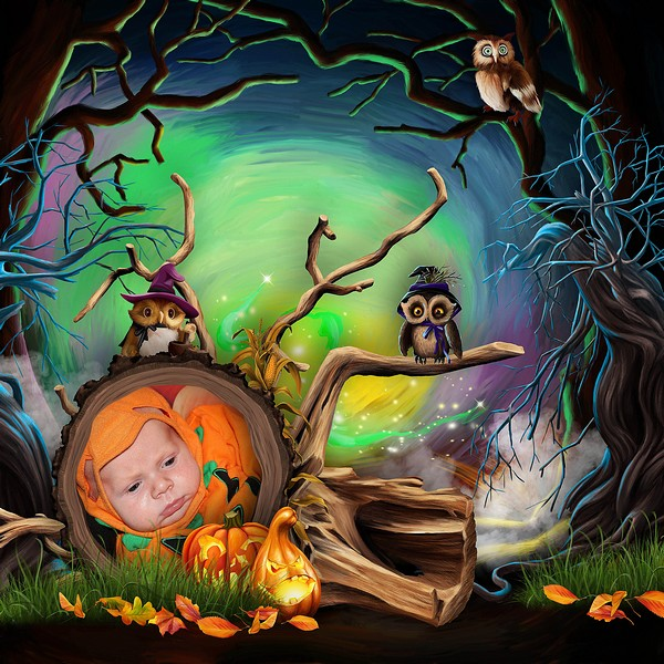 HALLOWEEN WITH THE FRIENDS OF THE FOREST - jeudi 14 octobre / thursday october 14th Kitty793