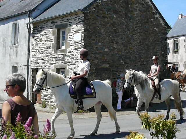 CONCOURS PHOTOS : Le cheval toiletté 25244610