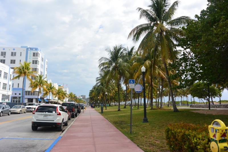 Flo et Géo découvrent la Floride et les Bahamas ! (DCL - USO - WDW) [MAJ le 26/06/16 - TR fini] - Page 2 Dsc_1214