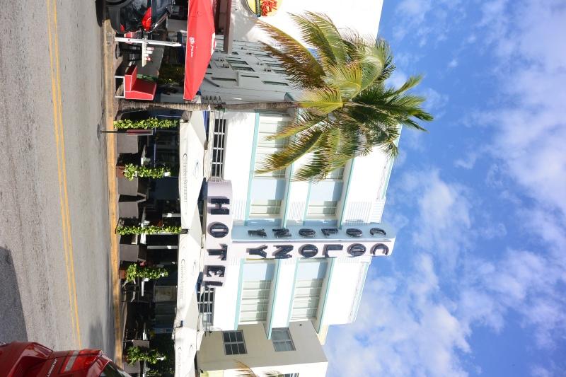 Flo et Géo découvrent la Floride et les Bahamas ! (DCL - USO - WDW) [MAJ le 26/06/16 - TR fini] - Page 2 Dsc_1216