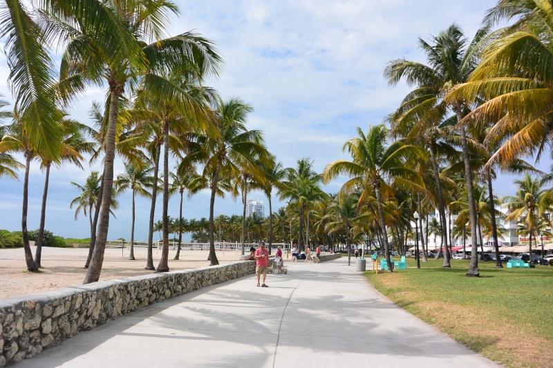 Flo et Géo découvrent la Floride et les Bahamas ! (DCL - USO - WDW) [MAJ le 26/06/16 - TR fini] - Page 2 Dsc_1228
