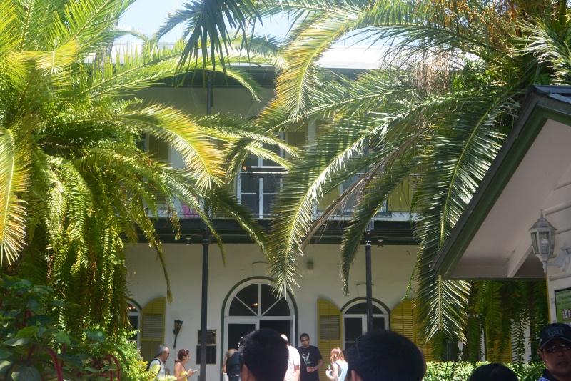 Flo et Géo découvrent la Floride et les Bahamas ! (DCL - USO - WDW) [MAJ le 26/06/16 - TR fini] - Page 3 Dsc_1517