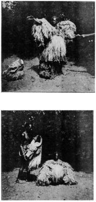 Senufo people, Waanyugo (or Waabele), Helmet Mask,   Korhogo District, Ivory Coast 51814_10