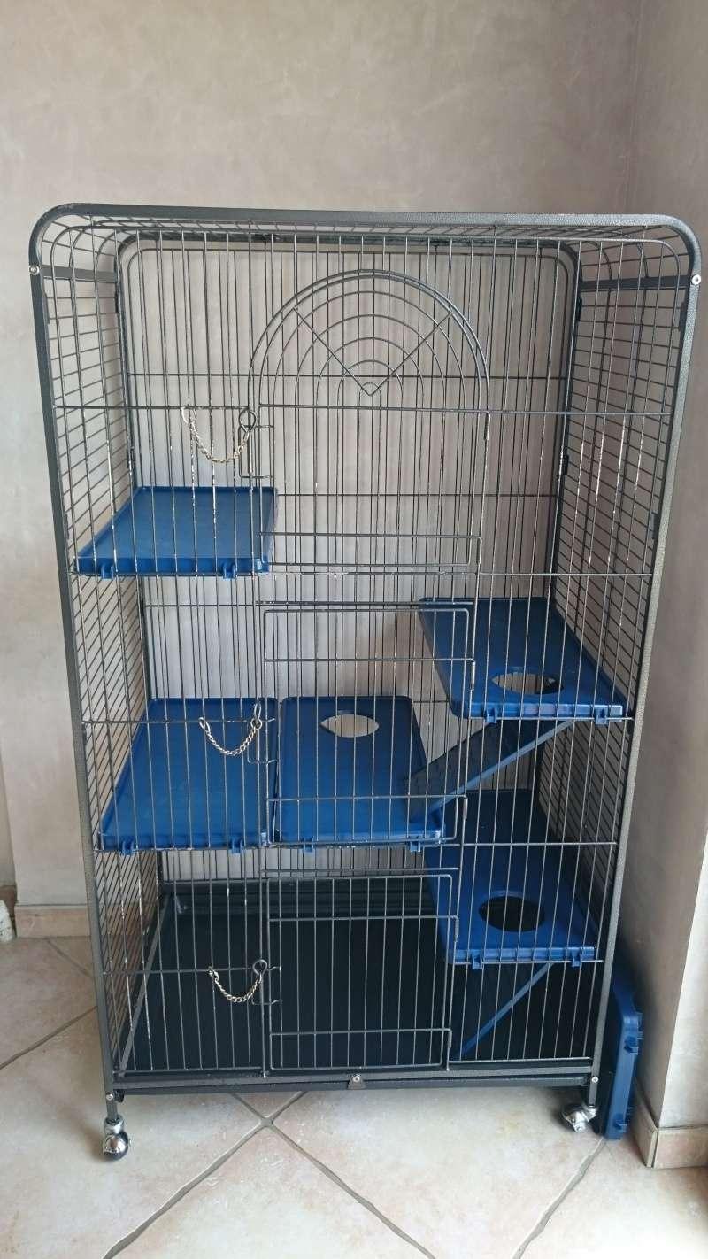 Conseil pour emplacement de cage - Page 2 Photo_14