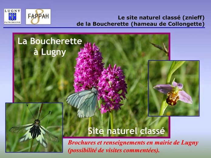 Diaporama Lugny Patrimoine  31_cop10