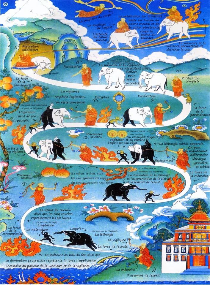 Images Zen - Page 3 11082510