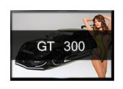 GT 300